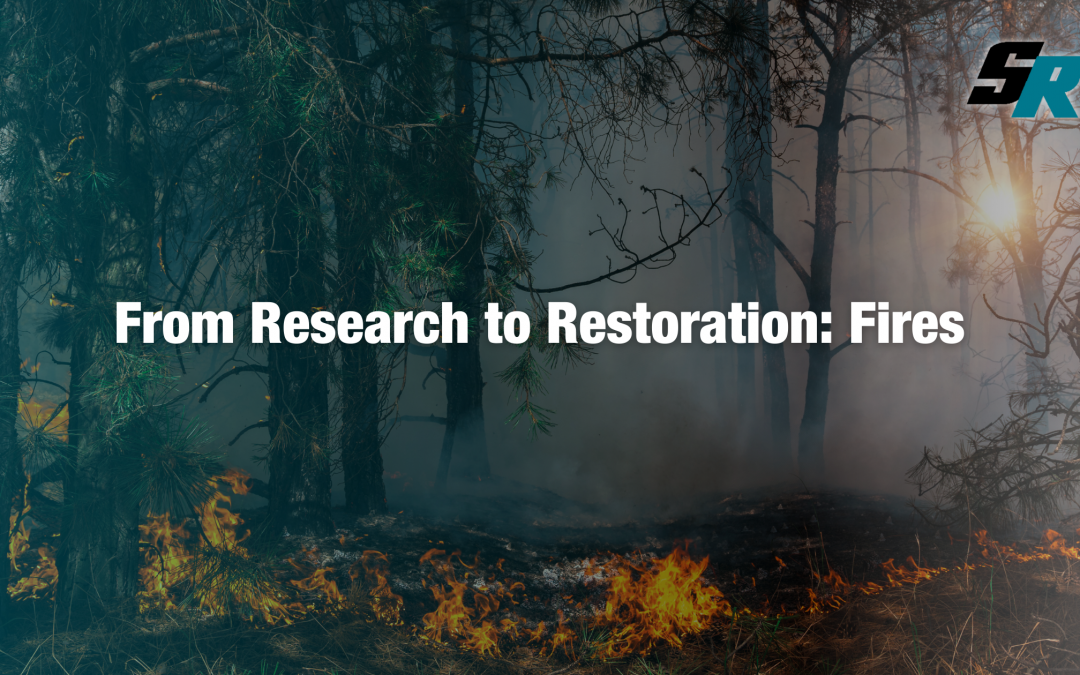 From Research to Restoration: Fires