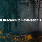 Wildfire Restoration with Sasser Restoration